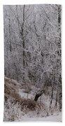 Canadian Ice Fog  Beach Towel