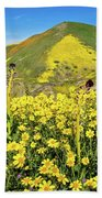 Candle Light In The Temblors - Superbloom 2017  Beach Towel