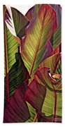 Canna Leaves 2   Beach Towel