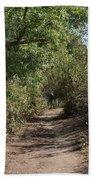 Canyon Path I Beach Towel