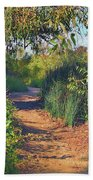 Canyon Path II Beach Towel