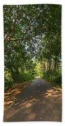 Cape Cod Rail Trail Trees Eastham Ma Beach Towel