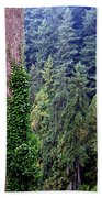 Capilano Canyon Ivy Beach Towel by Will Borden