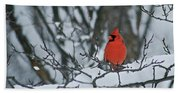 Cardinal And Snow Beach Towel