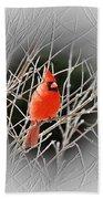 Cardinal Centered Beach Towel