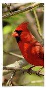Cardinal  Beach Towel