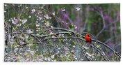 Cardinal In Flowering Tree Beach Towel