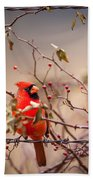 Cardinal With A Mouthful Of Hips Beach Towel