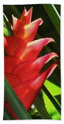 Caribbean Color Beach Towel