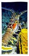 Caribbean Reef Lobster Beach Towel