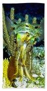 Caribbean Squid At Night - Alien Of The Deep Beach Towel