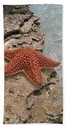 Caribbean Starfish Beach Towel