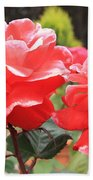 Carmel Mission Roses Beach Towel