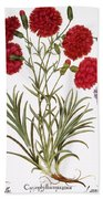 Carnation & Lavender, 1613 Beach Towel