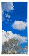 Carolina Blue Sky After The Rain Beach Towel