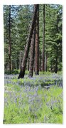 Carpet Of Lupine In Washington Forest Beach Towel