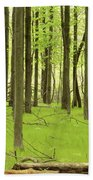 Carpeted Forest Beach Towel