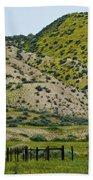 Carrizo Plain Daisy Hills Beach Towel