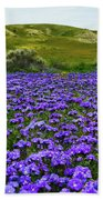 Carrizo Plain National Monument Wildflowers Beach Towel