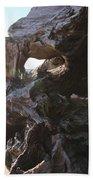Carving Driftwood Beach Towel