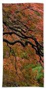 Cascading Japanese Maple Beach Sheet