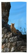 Castle Cat Beach Towel
