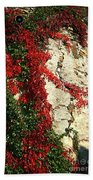 Castle Vines Beach Towel