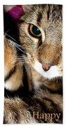 Cat Card Beach Towel