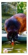 Cat Drinking In Picturesque Garden Beach Sheet