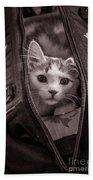 Cat In A Bag Beach Towel