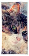 Cat Jasper Beach Towel