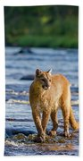 Cat On The River Beach Towel