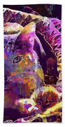 Cat Purr Kitten Pet Fur Feline  Beach Towel