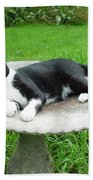 Cat Relaxing In A Birdbath In The Summertime  Beach Towel