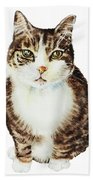 Cat Watercolor Illustration Beach Towel