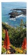 Catalina Island Coastline Beach Towel