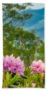 Catawba Rhododendron At The Craggy Beach Towel