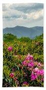 Catawba Rhododendrons Beach Towel