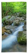 Catawba Stream Cascades At High Shoals Falls In North Carolina Beach Towel by Ranjay Mitra