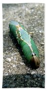Caterpillar 3 Beach Towel