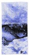 Catfish Blue Beach Towel