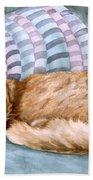 Catnap Beach Towel