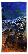 Cats On The Prowl Beach Towel