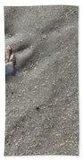 Cat's Paw Beach Towel