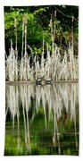 Cattail Reflection Beach Towel