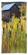Cattails And Barn Beach Towel