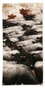 Cattle With Snow On Their Backs Beach Towel