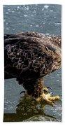 Cautious Eagle Beach Towel