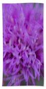 Cedar Park Texas Purple Thistle Beach Towel