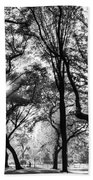 Central Park In Black And White Beach Towel